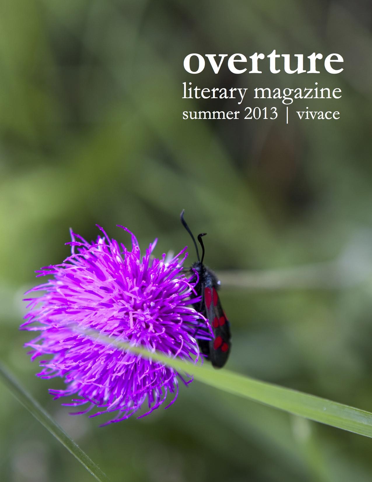 summer 2013 vivace